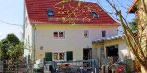 Read more about the article Kein Tag der offenen Tür im Katzenhaus Luga 2021