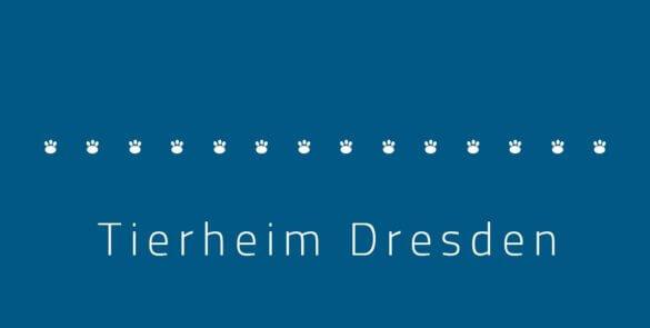 Tierheim Dresden