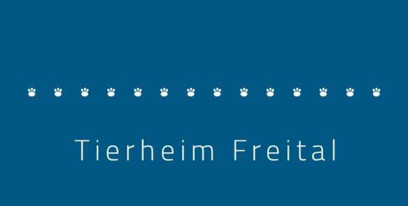 Tierheim Freital