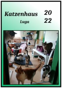 Read more about the article Katzenhaus-Kalender 2022