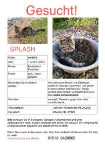 Read more about the article Katze Splash vermisst